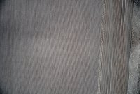 textil-pedroia-04-cafe