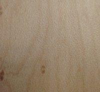 laminado-plastico-limber-maple