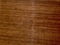 madera-de-machice