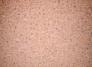 revestimiento-vinilico-407.1