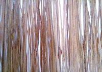 resina-bear-grass